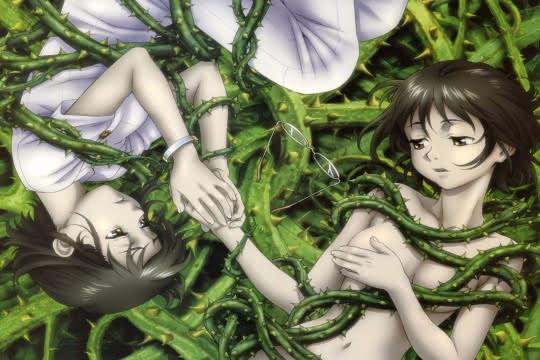 anime_Ibara no Ou